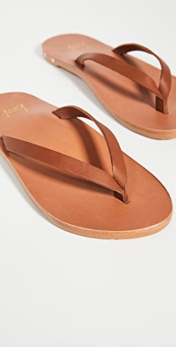 beek - Seabird 夹趾凉鞋