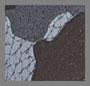 Desert Soil/Camo Brown