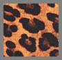 черный/ночной леопард