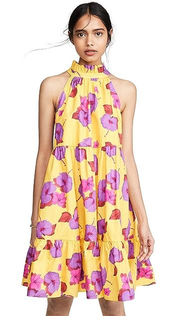 Borgo de Nor Margot Floral Mini Dress