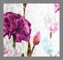 поле с тюльпанами, белый