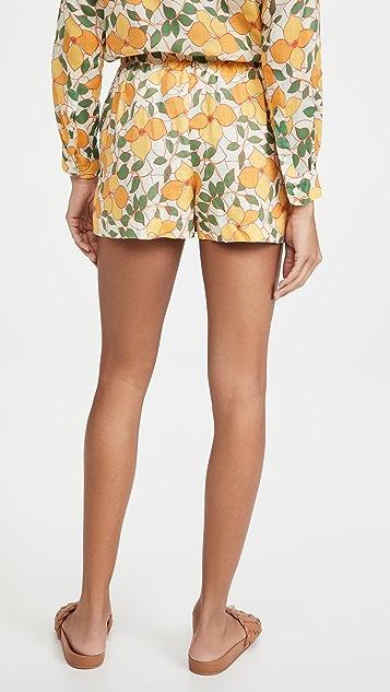 Birds of Paradis Ione Shorts
