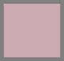 Aurora Pink