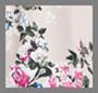 Carnation Floral