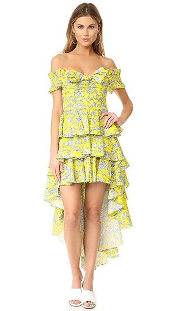 Caroline Constas Artemis Dress