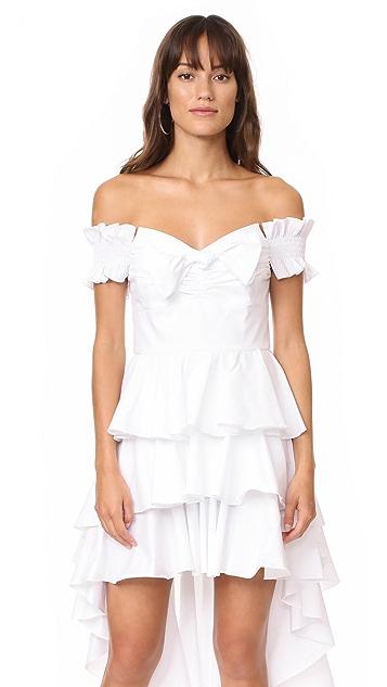 Caroline Constas Artemis Bustier Dress