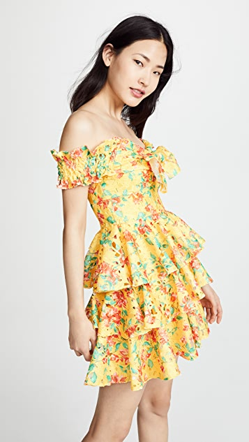 Caroline Constas Helena Lace Dress