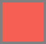Scarlet/Navy/Blue Jay