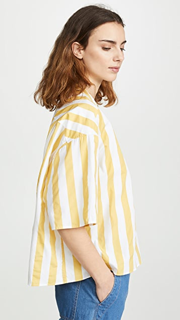 Closed Tulip Top