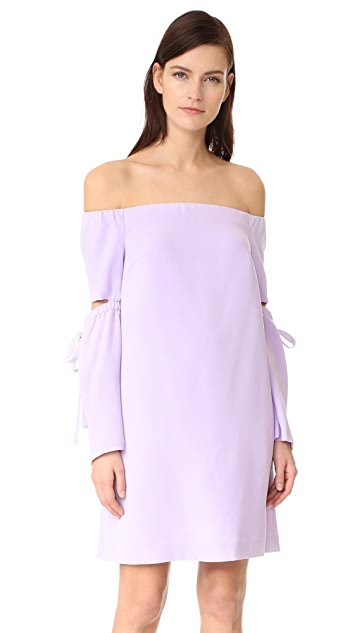 Club Monaco Eboviah Dress