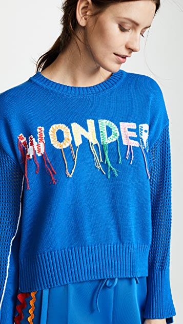 Mira Mikati Wonder Hand Embroidered Sweater