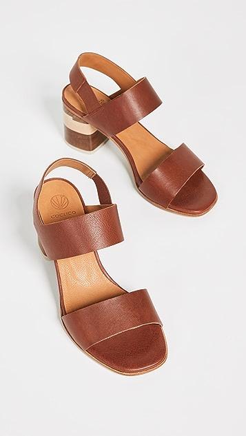 Coclico Shoes Bask Tri Color Sandals