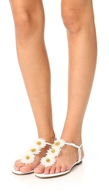 Charlotte Olympia Posey Flat Daisy Sandals