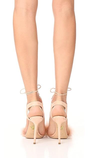 Charlotte Olympia Salsa Heels