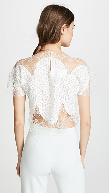 Costarellos Lace Blouse