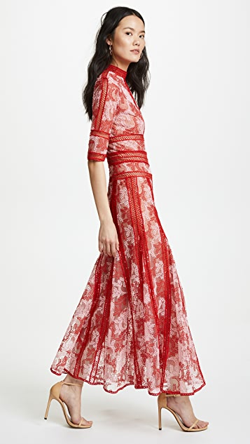 Costarellos Embroidered Tulle Dress