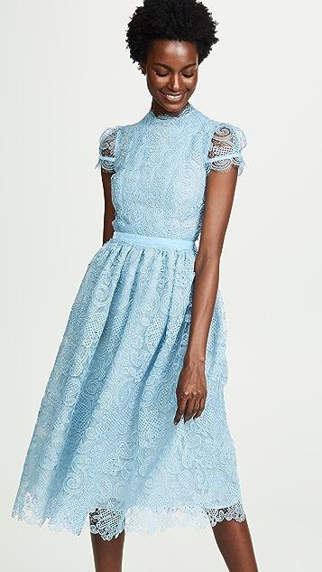 Costarellos Gossamer Lace Dress