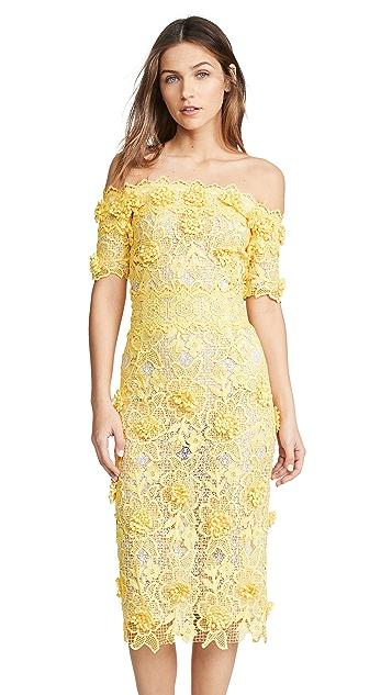 Costarellos Off the Shoulder Lasercut Lace Dress