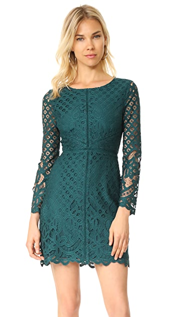 cupcakes and cashmere Spence Fitted Lace Dress