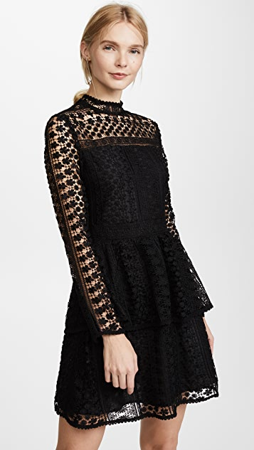 cupcakes and cashmere Symona Lace Dress - Black