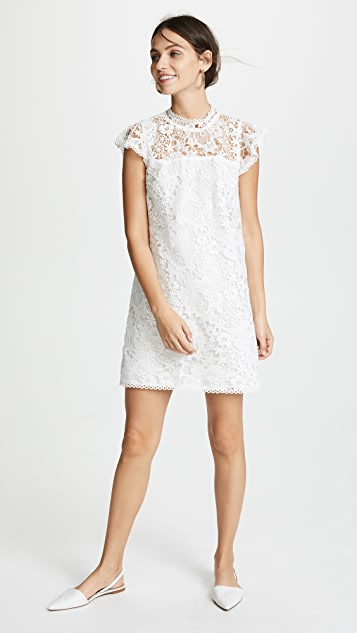 cupcakes and cashmere Floral Lace Dress