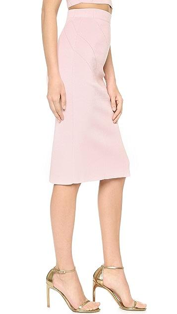 Cushnie Et Ochs High Waisted Pencil Skirt