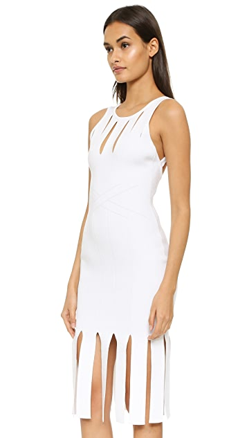Cushnie Et Ochs Cutout Sleeveless Fringed Dress