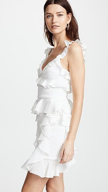 Cushnie Et Ochs Lala Sleeveless Mini Dress