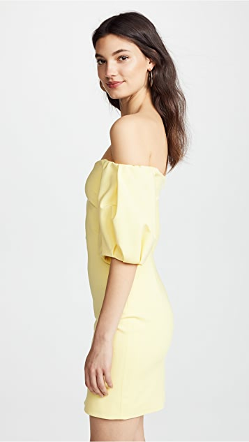 Cushnie Silvia Strapless Mini Dress