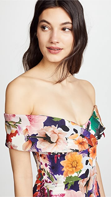 Cushnie Surrealist Floral Alba Dress