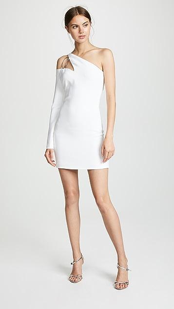 Cushnie Et Ochs Vittoria One Shoulder Dress
