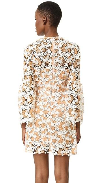 Cynthia Rowley Two Tone Lace Dress