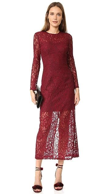 Cynthia Rowley Long Sleeve Lace Dress