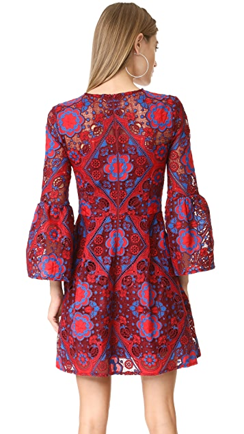 Cynthia Rowley Lace Ruffle Sleeve Dress