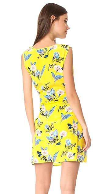 Diane von Furstenberg Tie Waist Mini Dress