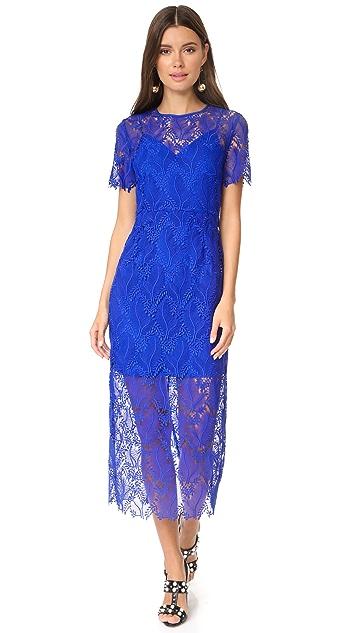 Diane von Furstenberg Tailored Overlay Midi Dress