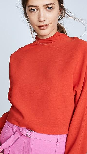 Diane von Furstenberg Raglan High Neck Blouse