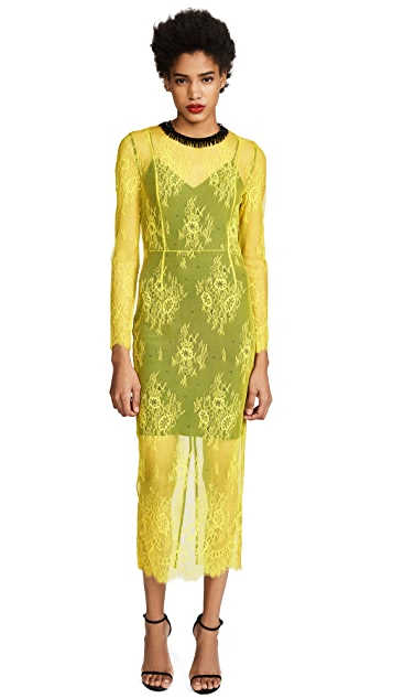 Diane von Furstenberg Crew Neck Lace Dress