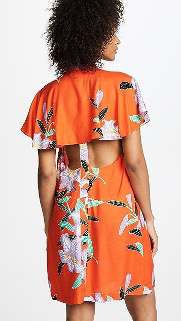 Diane von Furstenberg Argos Clementine Dress