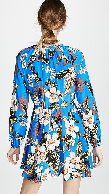 Diane von Furstenberg Cinch Sleeve Dress