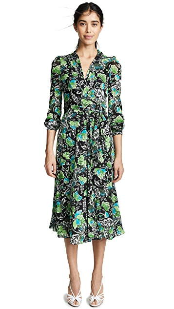 Diane von Furstenberg Phoenix Dress