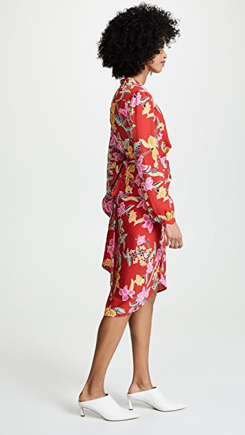 Diane von Furstenberg Carla Dress