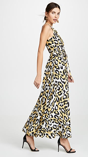 Diane von Furstenberg Sierra Dress