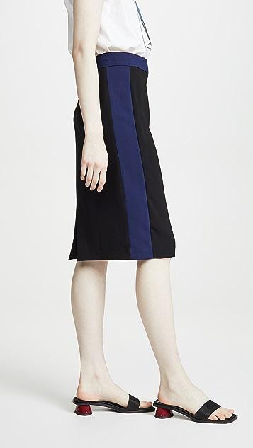 Diane von Furstenberg Esteem Skirt