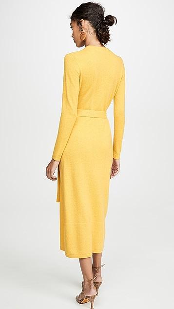 Diane von Furstenberg Astrid Dress