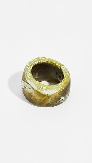 Dinosaur Designs Band Ring
