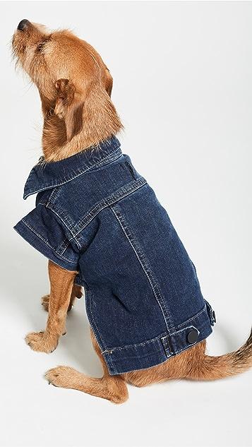 DL1961 Pet's Fido Dog Jean Jacket