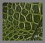 翡翠绿鳄鱼纹