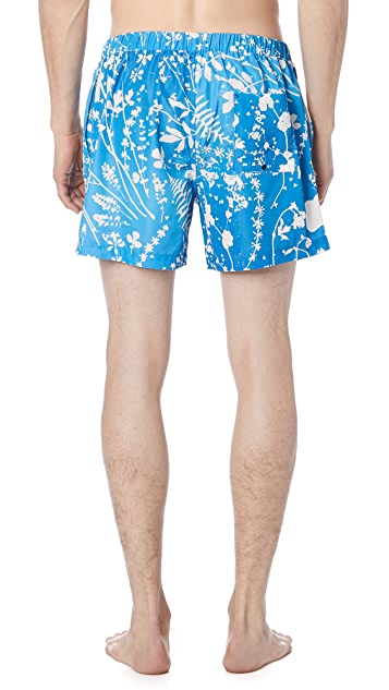 Double Rainbouu Dream Fields Night Swim Shorts