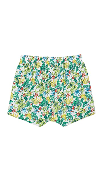 Druthers Toucan Boxers